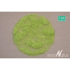 4.5mm Spring Static grass