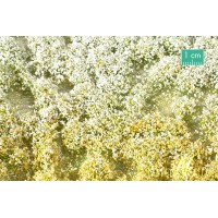 Blossom Tufts Spring (small) Large Pack