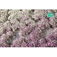 Blossom Tufts Early Fall (Small). Large Pack