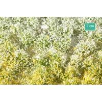 Blossom Tufts Spring (Large). Large Pack