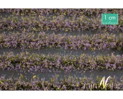 Violet Flower Field Strips