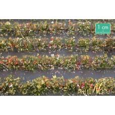 Colourful Flower Field Strips