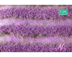 Lavender Field Strips (Large)