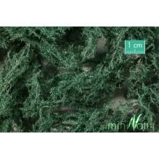 Ground Cover Evergreen (Dark)